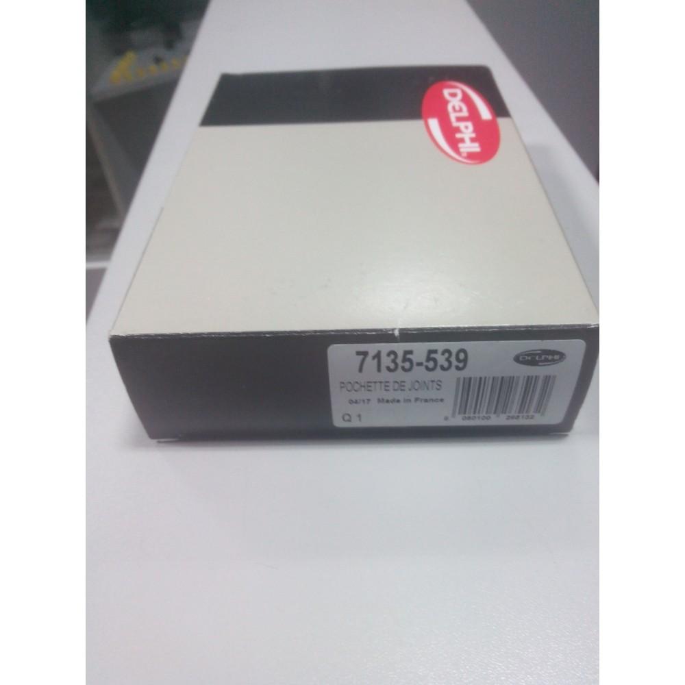 Купить Ремкомплект ТНВД (Renault Cango) 7135-539 в  Украине