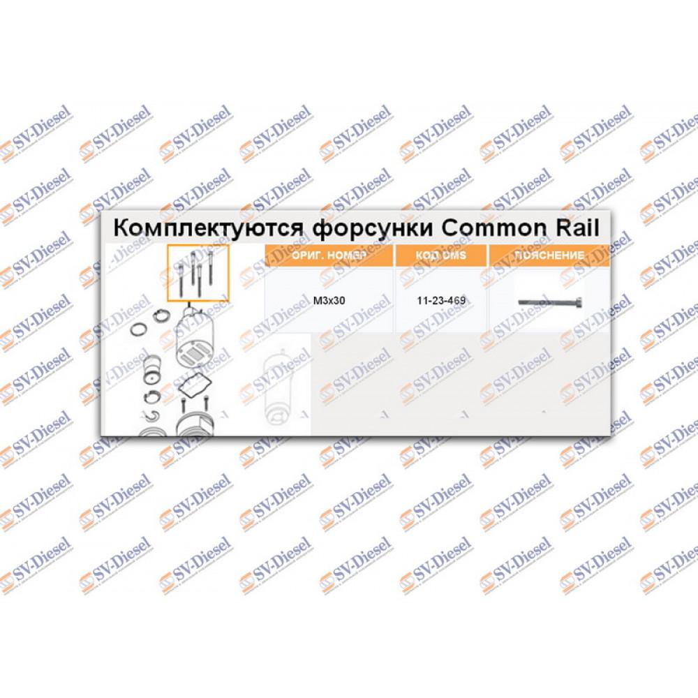 Болт (М3х30)  EUI Delphi  11-23-469